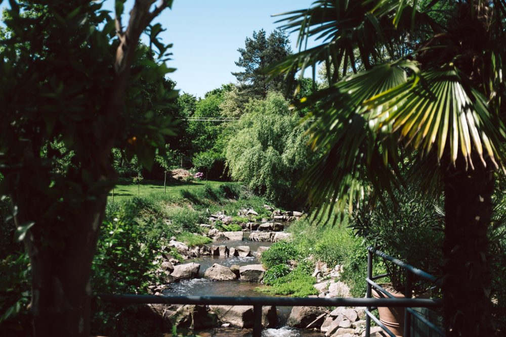 Bachlauf in einem Park