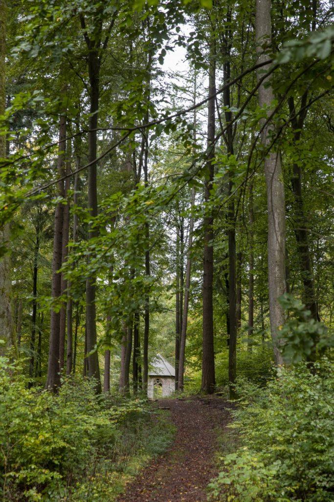 Waldweg zu Steinhäuschen